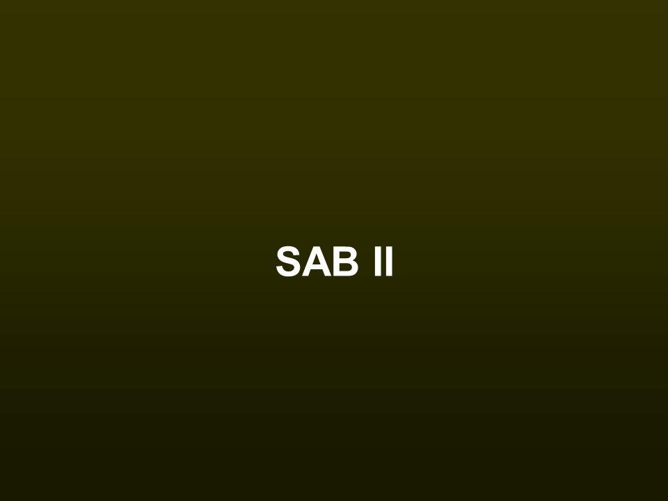 SAB II