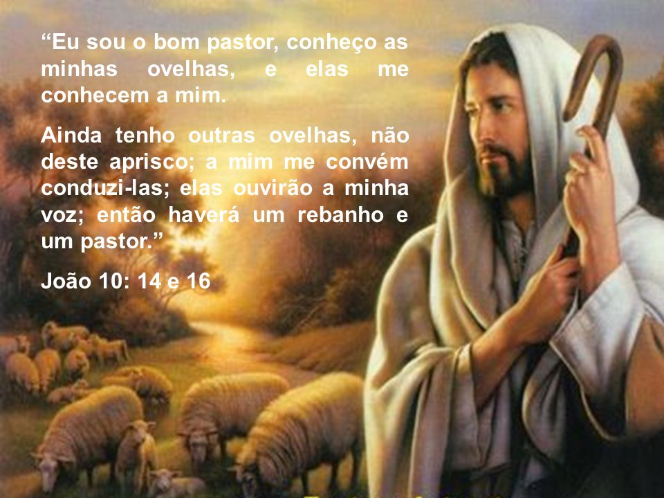 Eu sou o bom pastor, conheço as minhas ovelhas, e elas me conhecem a mim. Ainda tenho outras ovelhas, não deste aprisco; a mim me convém conduzi-las;