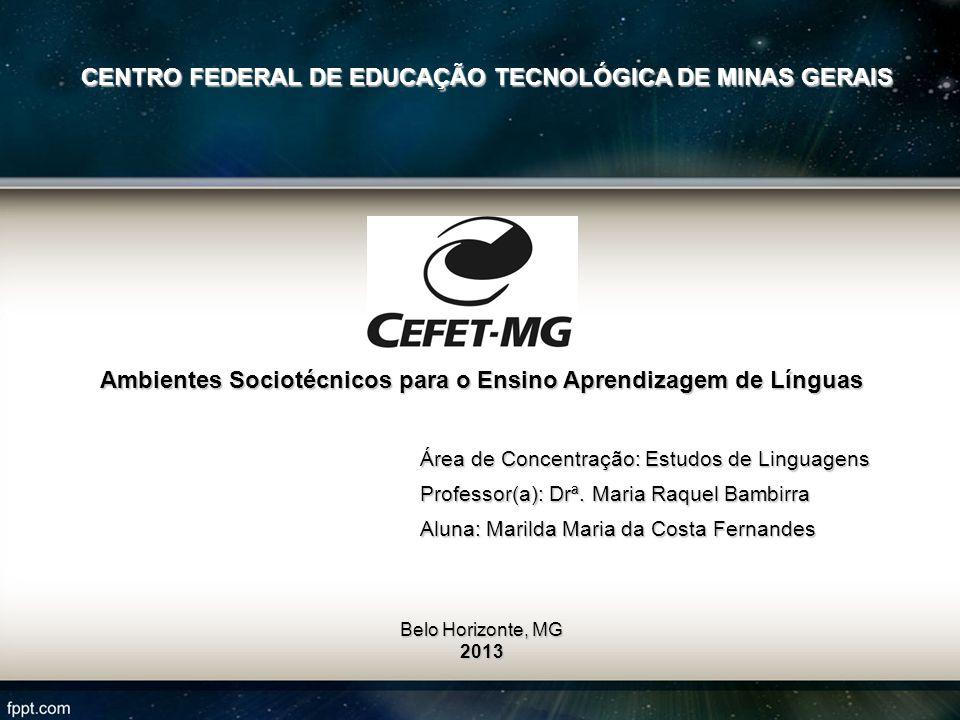 A Rede Interacional no Ambiente Digital de Aprendizagem Vicente Aguimar Parreiras