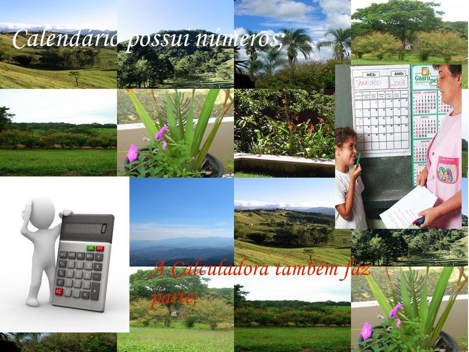 Calendário possui números; A Calculadora também faz parte;