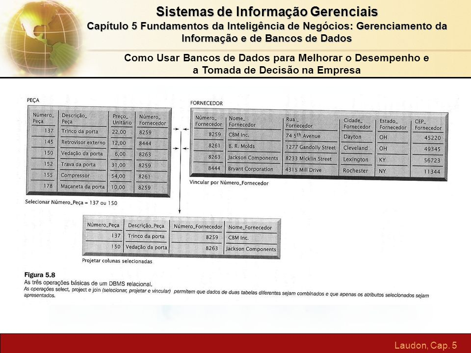 Sistemas de Informação Gerenciais Capítulo 5 Fundamentos da Inteligência de Negócios: Gerenciamento da Informação e de Bancos de Dados Laudon, Cap. 5