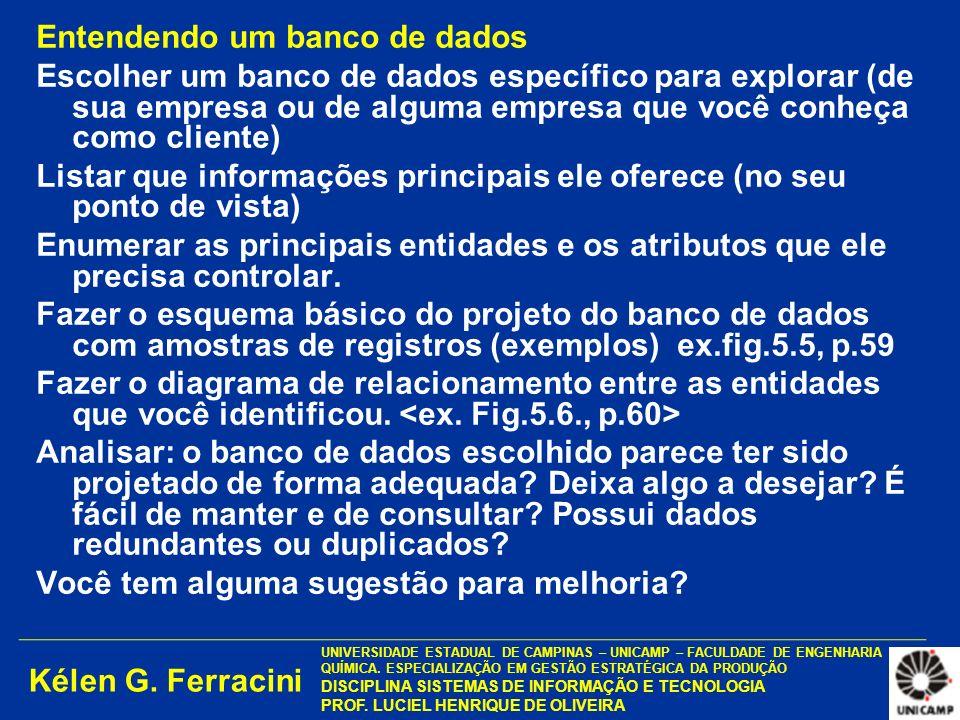 Kélen G. Ferracini UNIVERSIDADE ESTADUAL DE CAMPINAS – UNICAMP – FACULDADE DE ENGENHARIA QUÍMICA. ESPECIALIZAÇÃO EM GESTÃO ESTRATÉGICA DA PRODUÇÃO DIS