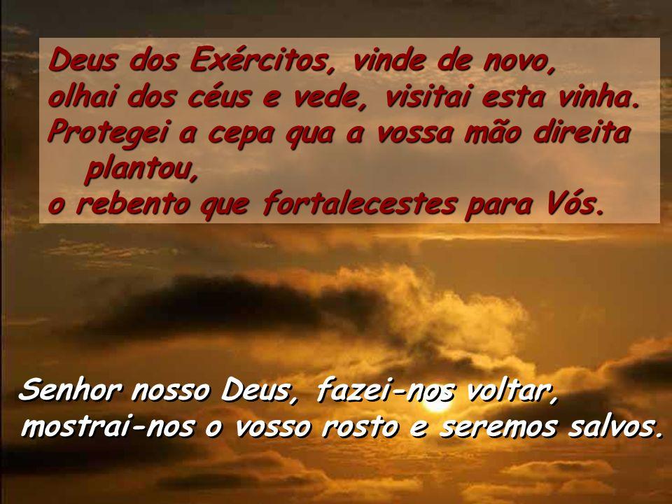 Senhor nosso Deus, fazei-nos voltar, mostrai-nos o vosso rosto e seremos salvos.