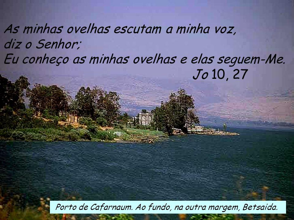 Ef 2, 13-18 Irmãos: Foi em Cristo Jesus que vós, outrora longe de Deus, vos aproximastes dEle, graças ao sangue de Cristo. Cristo é, de facto, a nossa