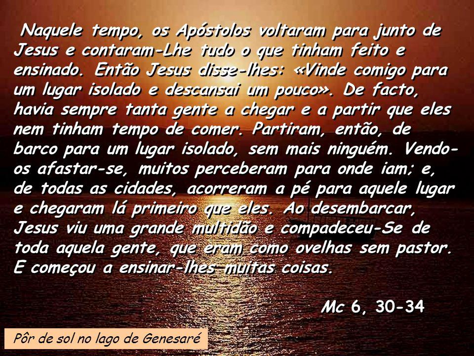 Naquele tempo, os Apóstolos voltaram para junto de Jesus e contaram-Lhe tudo o que tinham feito e ensinado.