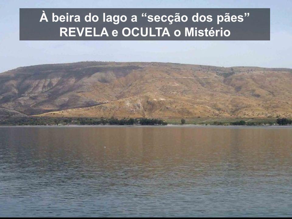 À beira do lago a secção dos pães REVELA e OCULTA o Mistério