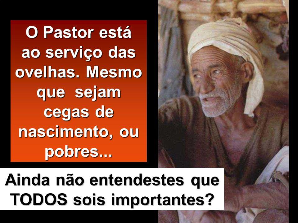 O Pastor está ao serviço das ovelhas.Mesmo que sejam cegas de nascimento, ou pobres...