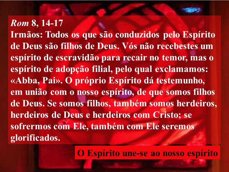 Rom 8, 14-17 Irmãos: Todos os que são conduzidos pelo Espírito de Deus são filhos de Deus.
