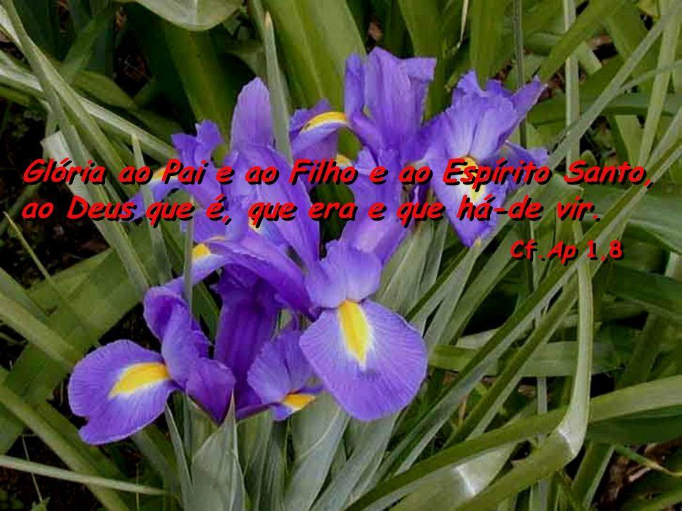 Glória ao Pai e ao Filho e ao Espírito Santo, ao Deus que é, que era e que há-de vir.