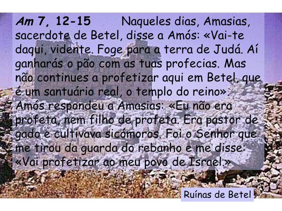 Am 7, 12-15 Naqueles dias, Amasias, sacerdote de Betel, disse a Amós: «Vai-te daqui, vidente.