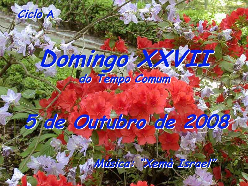 Ciclo A Domingo XXVII do Tempo Comum Domingo XXVII do Tempo Comum 5 de Outubro de 2008 Música: Xemà Israel