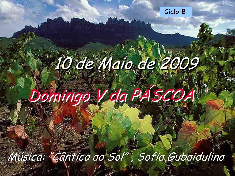 Música: Cântico ao Sol, Sofia Gubaidulina 10 de Maio de 2009 Domingo V da PÁSCOA Ciclo B