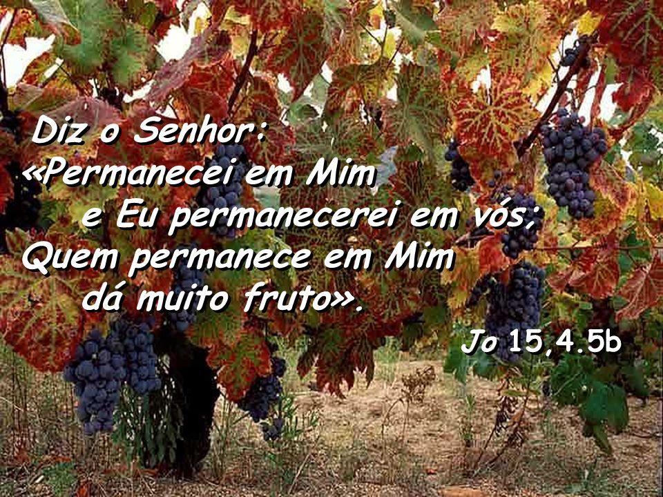 Diz o Senhor: «Permanecei em Mim e Eu permanecerei em vós; Quem permanece em Mim dá muito fruto».