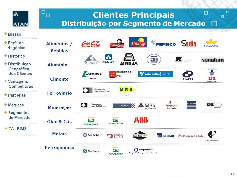 12 + Missão + Perfil de Negócios + Histórico + Vantagens Competitivas + Parcerias + Métricas + Segmentos de Mercado + TA - PIMS + Distribuição Geográf
