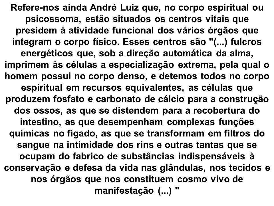Refere-nos ainda André Luiz que, no corpo espiritual ou psicossoma, estão situados os centros vitais que presidem à atividade funcional dos vários órg
