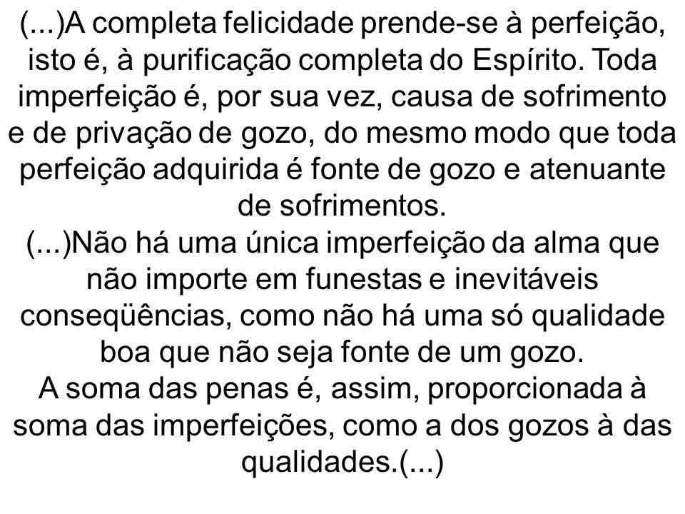 (...)A completa felicidade prende-se à perfeição, isto é, à purificação completa do Espírito. Toda imperfeição é, por sua vez, causa de sofrimento e d