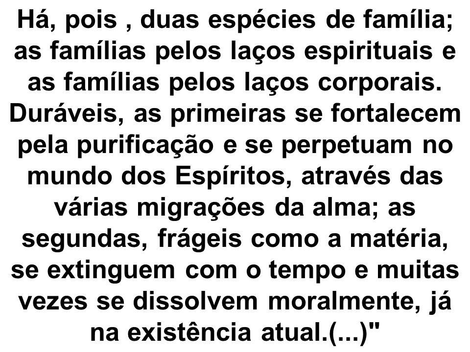 Há, pois, duas espécies de família; as famílias pelos laços espirituais e as famílias pelos laços corporais. Duráveis, as primeiras se fortalecem pela