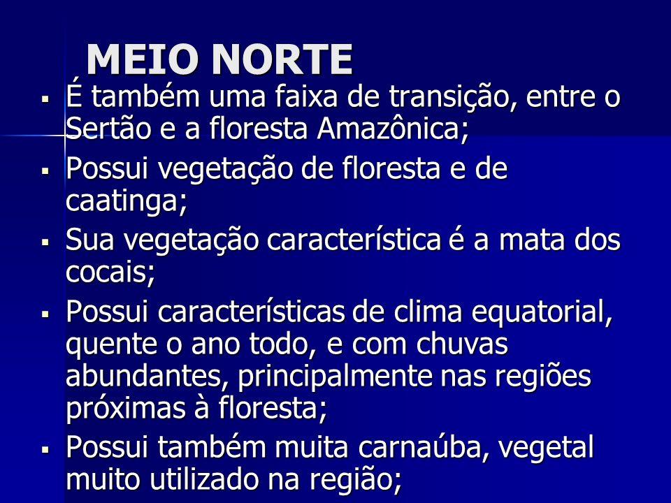 MEIO NORTE É também uma faixa de transição, entre o Sertão e a floresta Amazônica; É também uma faixa de transição, entre o Sertão e a floresta Amazôn