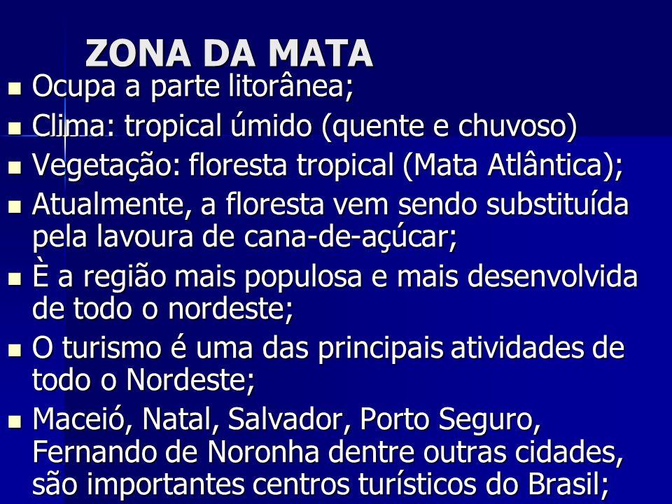 ZONA DA MATA Ocupa a parte litorânea; Ocupa a parte litorânea; Clima: tropical úmido (quente e chuvoso) Clima: tropical úmido (quente e chuvoso) Veget