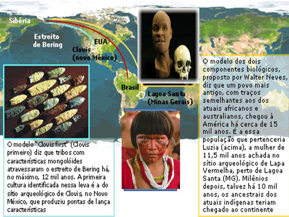 A importância das fontes históricas. Walter Neves no Laboratório de Estudos Evolutivos Humanos, no Instituto de Biociências da USP Os pesquisadores qu