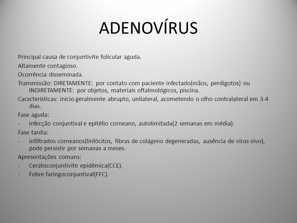 ADENOVÍRUS Principal causa de conjuntivite folicular aguda. Altamente contagioso. Ocorrência disseminada. Transmissão: DIRETAMENTE: por contato com pa