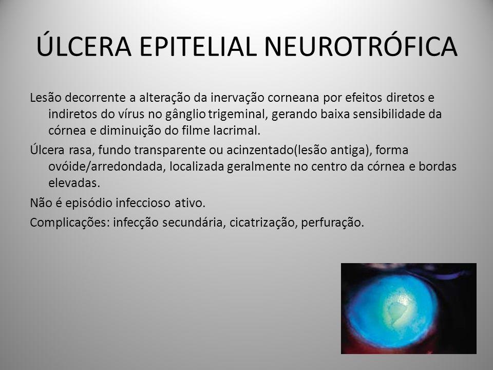 ÚLCERA EPITELIAL NEUROTRÓFICA Lesão decorrente a alteração da inervação corneana por efeitos diretos e indiretos do vírus no gânglio trigeminal, geran