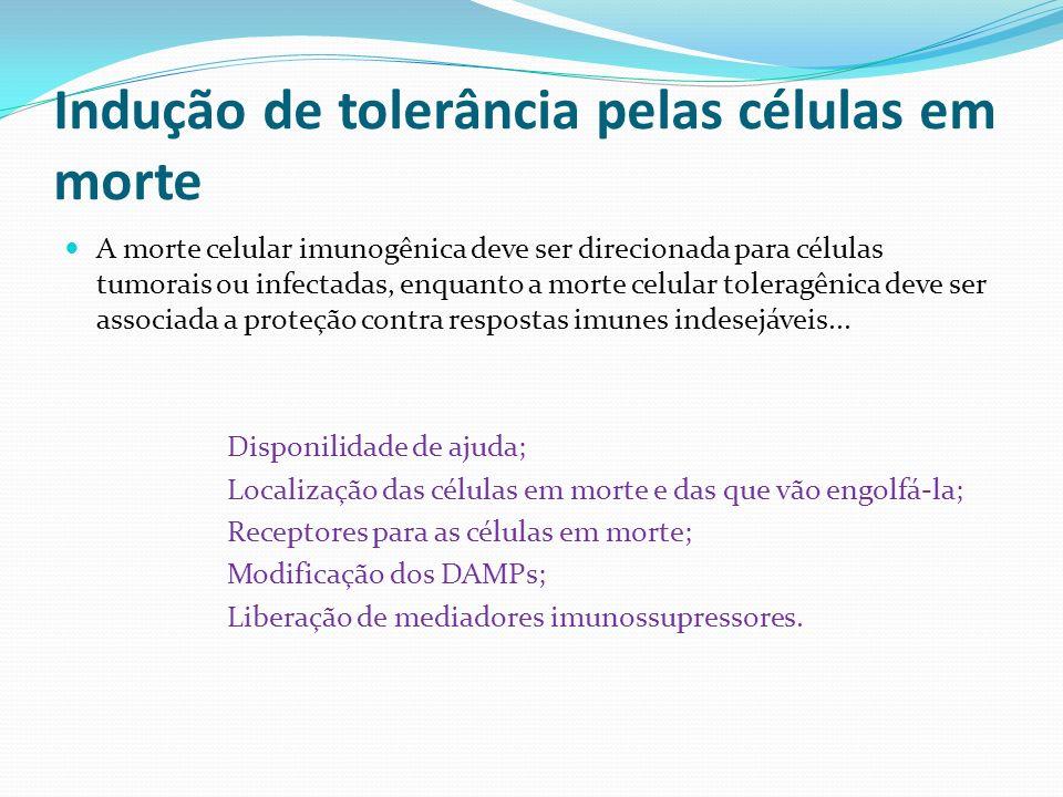 Indução de tolerância pelas células em morte A morte celular imunogênica deve ser direcionada para células tumorais ou infectadas, enquanto a morte ce