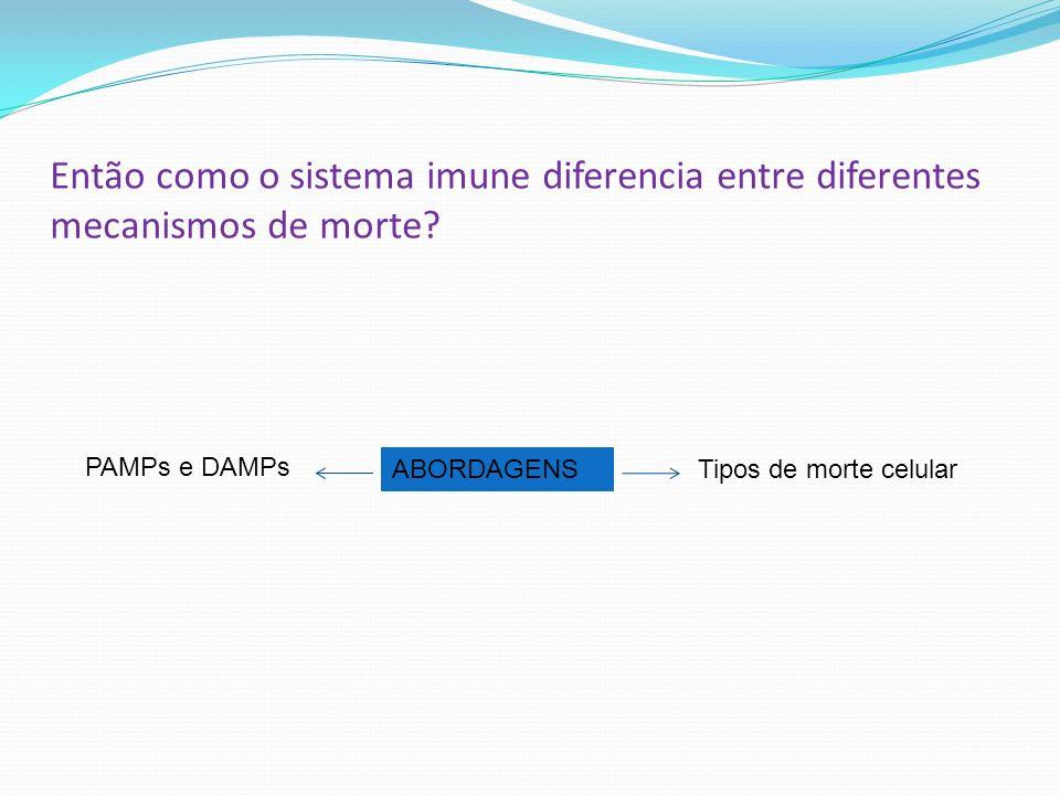 Então como o sistema imune diferencia entre diferentes mecanismos de morte? ABORDAGENS PAMPs e DAMPs Tipos de morte celular