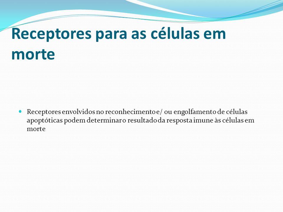 Receptores para as células em morte Receptores envolvidos no reconhecimento e/ ou engolfamento de células apoptóticas podem determinar o resultado da