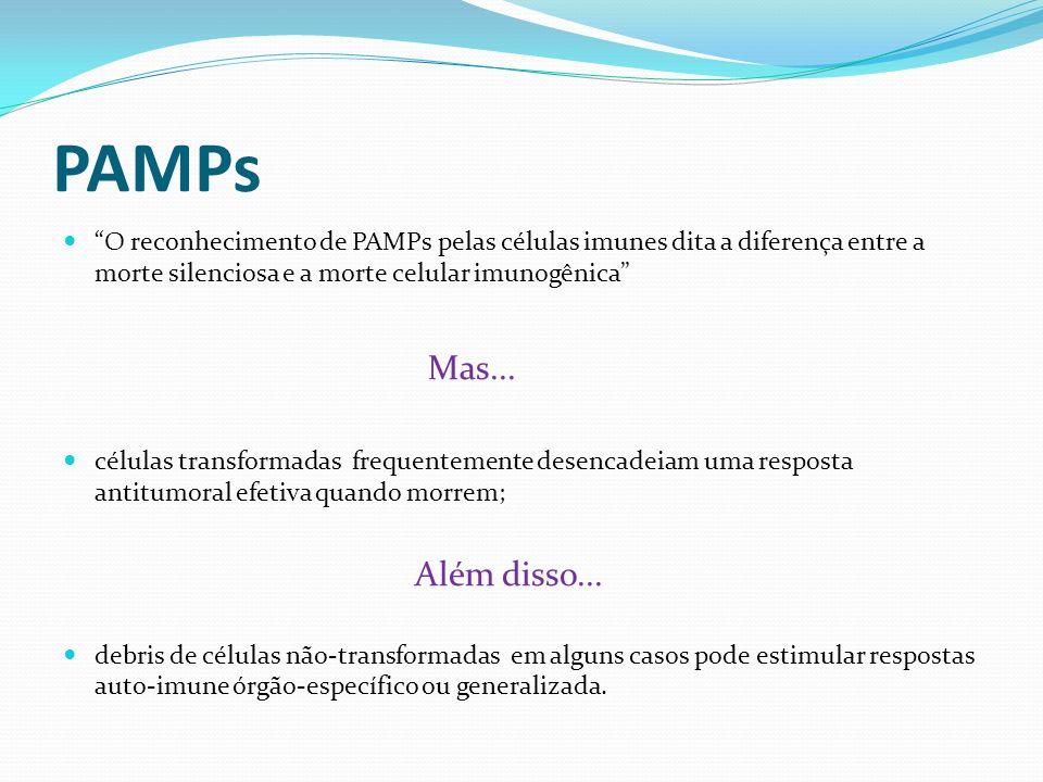 DAMPs Para que a morte celular seja imunogênica, é necessário a liberação de DAMPs para estimular as células imunológicas DAMPs são reconhecidos por receptores de reconhecimento de padrões (PRRs) Calreticulina; HSPs; Fosfatidilserina; Ptns, ácidos nucl.; HMGB1
