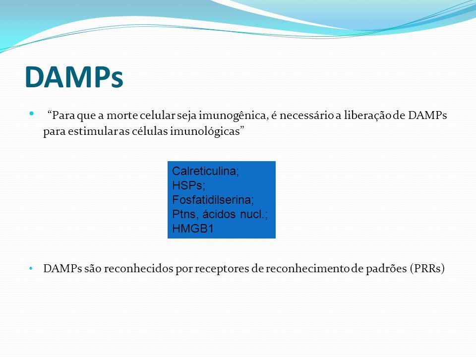 DAMPs Para que a morte celular seja imunogênica, é necessário a liberação de DAMPs para estimular as células imunológicas DAMPs são reconhecidos por r