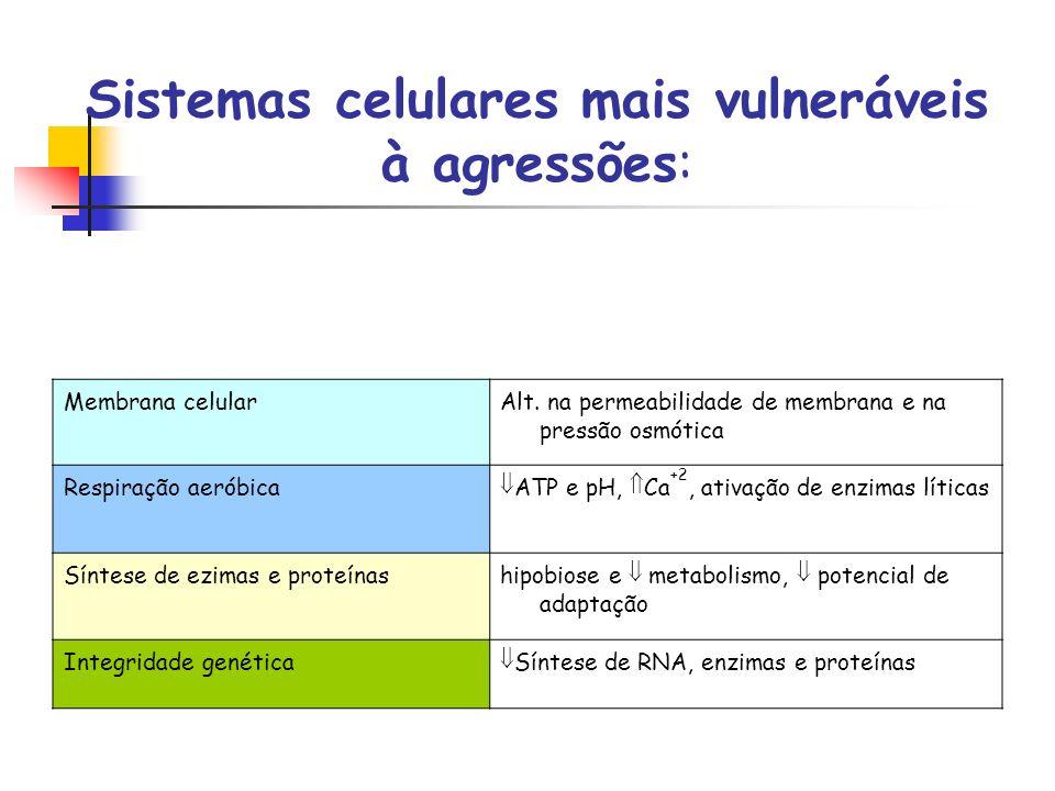 Sistemas celulares mais vulneráveis à agressões: Membrana celularAlt. na permeabilidade de membrana e na pressão osmótica Respiração aeróbicaATP e pH,