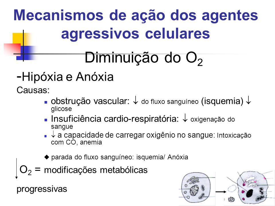 Mecanismos de ação dos agentes agressivos celulares Diminuição do O 2 - Hipóxia e Anóxia Causas: obstrução vascular: do fluxo sanguíneo (isquemia) gli