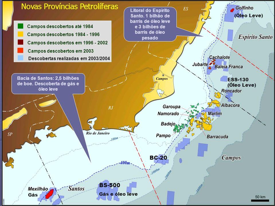 24 Campos descobertos até 1984 Campos descobertos 1984 - 1996 Campos descobertos em 1996 - 2002 Descobertas realizadas em 2003/2004 BS-500 Gás e óleo