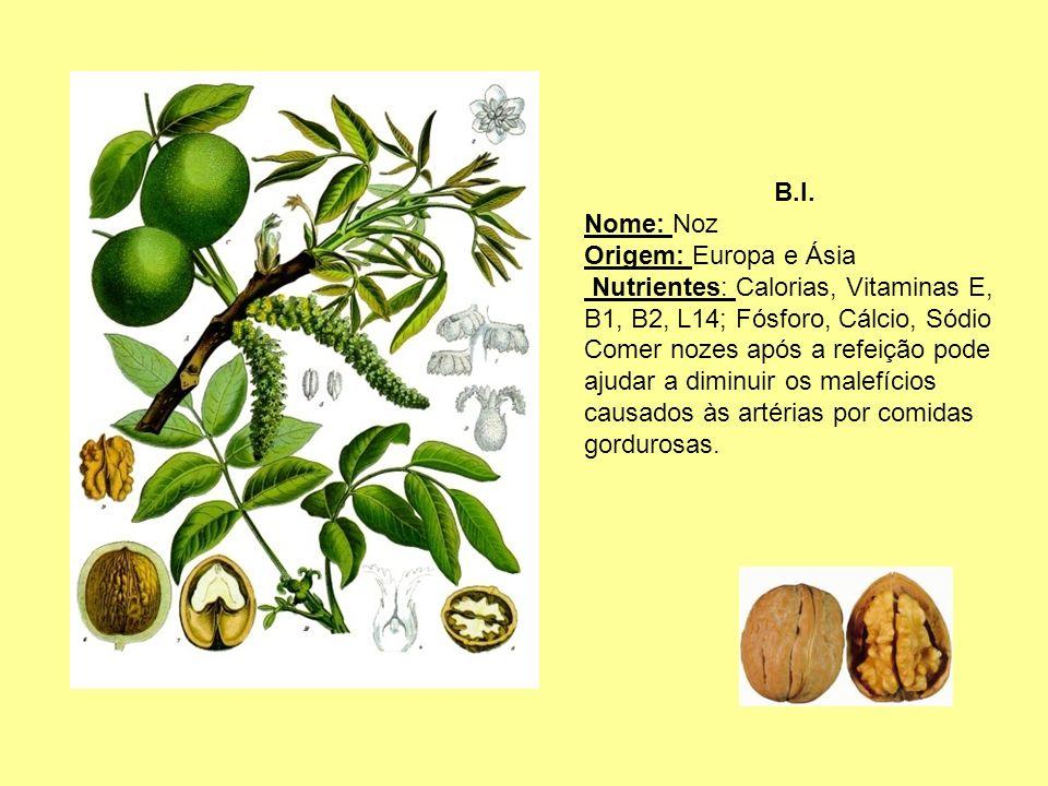 B.I. Nome: Noz Origem: Europa e Ásia Nutrientes: Calorias, Vitaminas E, B1, B2, L14; Fósforo, Cálcio, Sódio Comer nozes após a refeição pode ajudar a