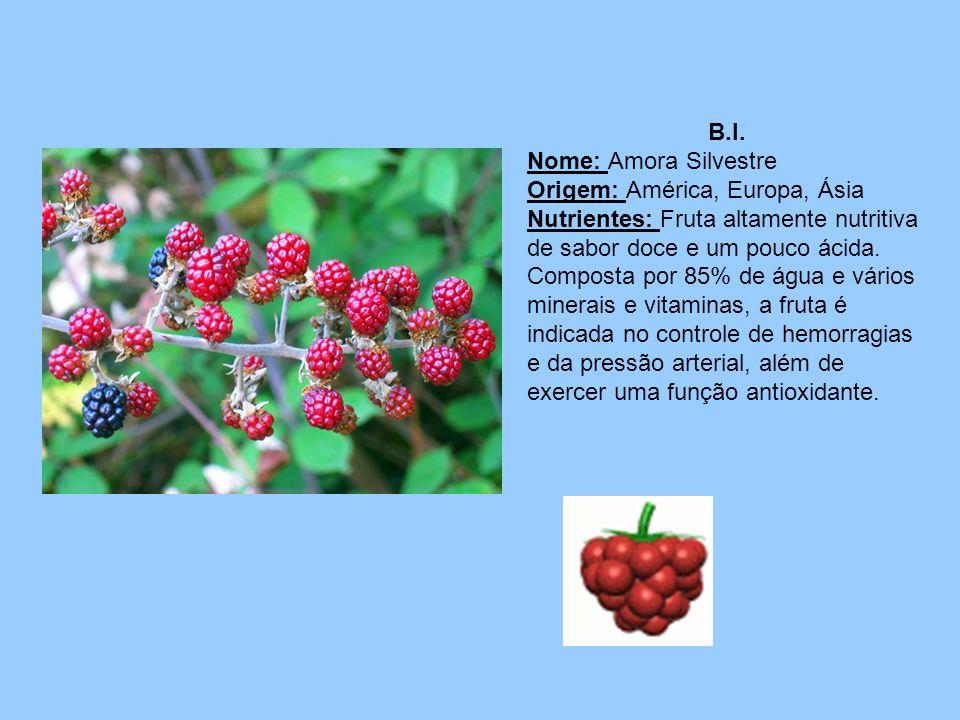 B.I. Nome: Amora Silvestre Origem: América, Europa, Ásia Nutrientes: Fruta altamente nutritiva de sabor doce e um pouco ácida. Composta por 85% de águ