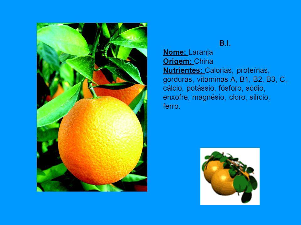 B.I. Nome: Laranja Origem: China Nutrientes: Calorias, proteínas, gorduras, vitaminas A, B1, B2, B3, C, cálcio, potássio, fósforo, sódio, enxofre, mag