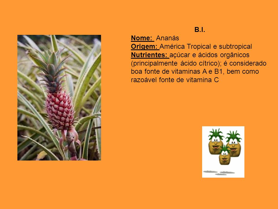 B.I. Nome: Ananás Origem: América Tropical e subtropical Nutrientes: açúcar e ácidos orgânicos (principalmente ácido cítrico); é considerado boa fonte