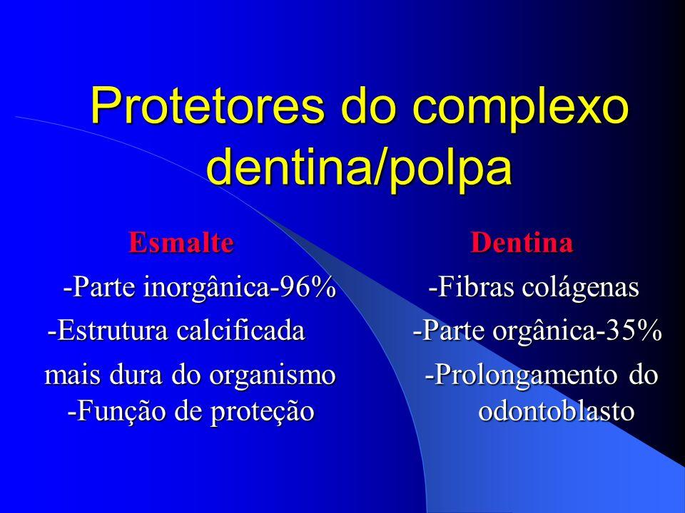 Protetores do complexo dentina/polpa EsmalteDentina -Parte inorgânica-96% -Fibras colágenas -Estrutura calcificada -Parte orgânica-35% -Estrutura calc