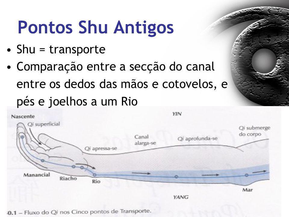 Pontos Shu Antigos Shu = transporte Comparação entre a secção do canal entre os dedos das mãos e cotovelos, e pés e joelhos a um Rio
