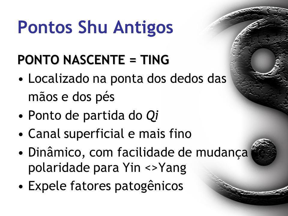 Pontos Shu Antigos PONTO NASCENTE = TING Localizado na ponta dos dedos das mãos e dos pés Ponto de partida do Qi Canal superficial e mais fino Dinâmic