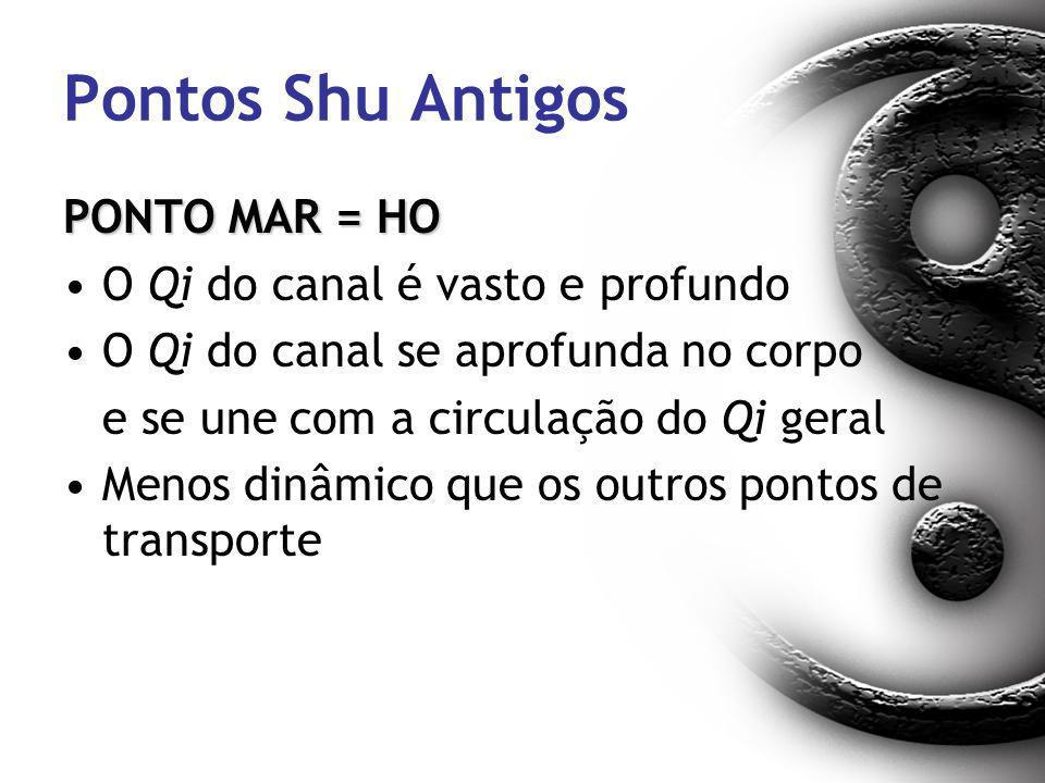 Pontos Shu Antigos PONTO MAR = HO O Qi do canal é vasto e profundo O Qi do canal se aprofunda no corpo e se une com a circulação do Qi geral Menos din