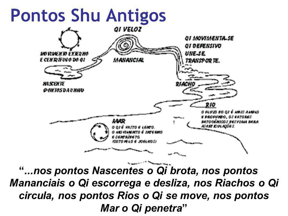 Pontos Shu Antigos...nos pontos Nascentes o Qi brota, nos pontos Mananciais o Qi escorrega e desliza, nos Riachos o Qi circula, nos pontos Rios o Qi s