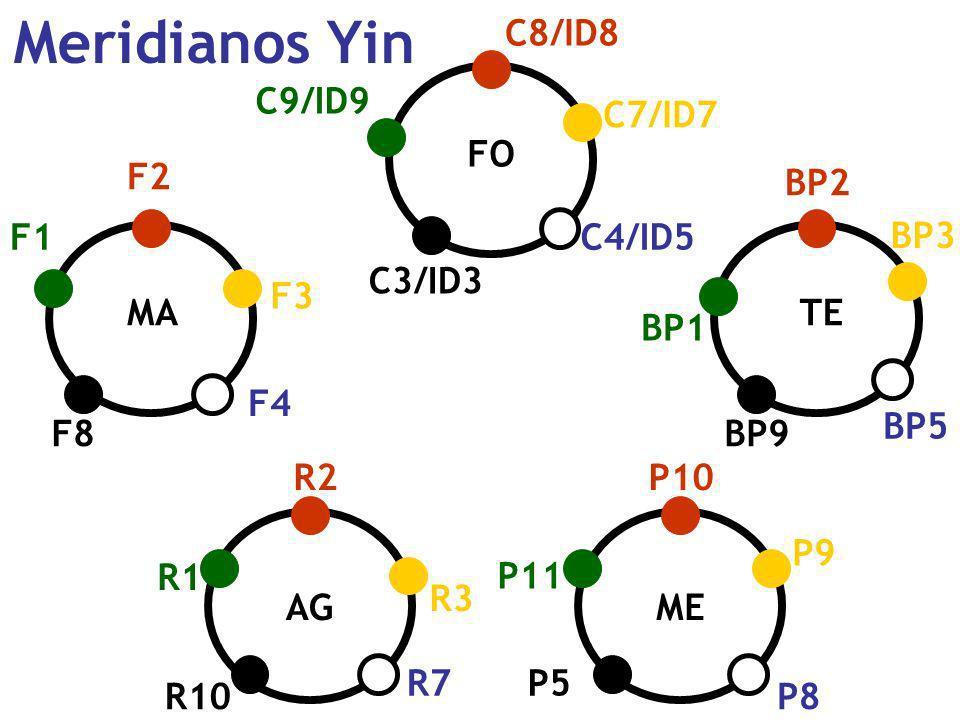 Meridianos Yin FO ME TE AG MA F2 F8 F1 F3 F4 C8/ID8 C3/ID3 C9/ID9 C4/ID5 BP2 BP9 BP1 BP3 BP5 P5 P10 P11 P9 P8 R2 R10 R1 R3 R7 C7/ID7