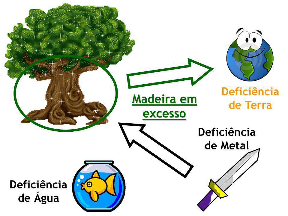 Madeira em excesso Deficiência de Terra Deficiência de Metal Deficiência de Água