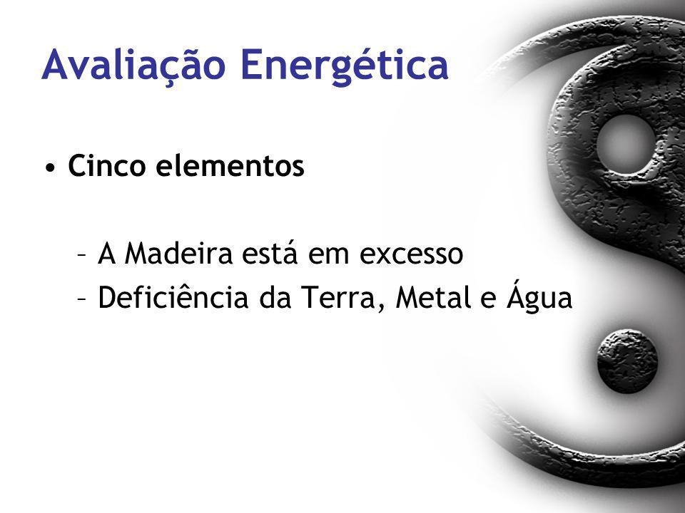 Avaliação Energética Cinco elementos –A Madeira está em excesso –Deficiência da Terra, Metal e Água