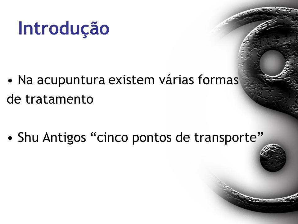 Introdução Na acupuntura existem várias formas de tratamento Shu Antigos cinco pontos de transporte