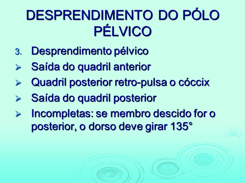 DESPRENDIMENTO DO PÓLO PÉLVICO 3. Desprendimento pélvico Saída do quadril anterior Saída do quadril anterior Quadril posterior retro-pulsa o cóccix Qu