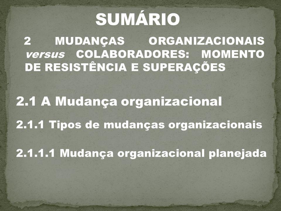 2 MUDANÇAS ORGANIZACIONAIS versus COLABORADORES: MOMENTO DE RESISTÊNCIA E SUPERAÇÕES 2.1 A Mudança organizacional 2.1.1 Tipos de mudanças organizacion