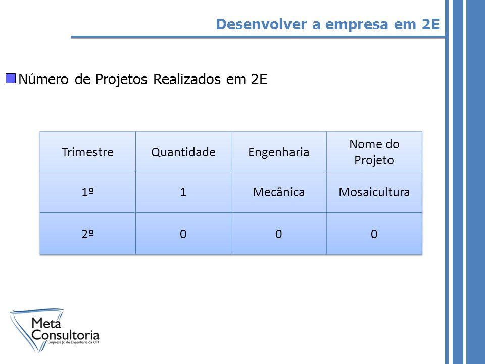 Número de Projetos Realizados em 2E Desenvolver a empresa em 2E